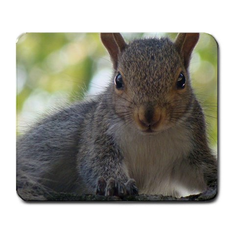 Baby Squirrel By Ruth Pruiksma   Large Mousepad   Msiofq3uxxfl   Www Artscow Com Front