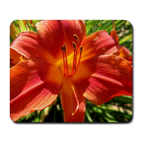 Flower Mousepad By Melissa Hoopingarner   Large Mousepad   7gyy46qlb6sg   Www Artscow Com Front