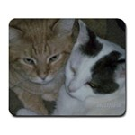 MY KITTIES - Large Mousepad