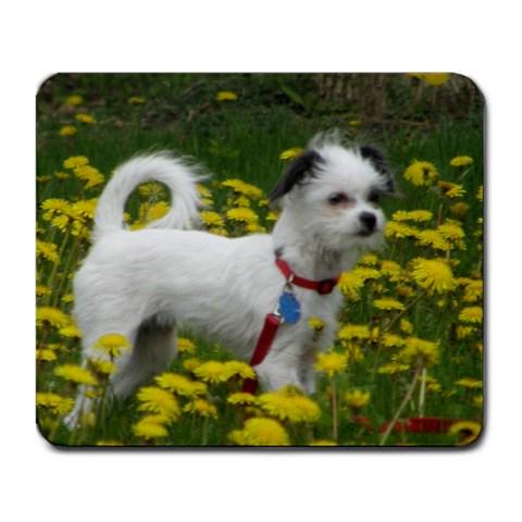 Free Mousepad From Www Artscow Com By Sue Morton   Large Mousepad   0qz7kxblywcq   Www Artscow Com Front