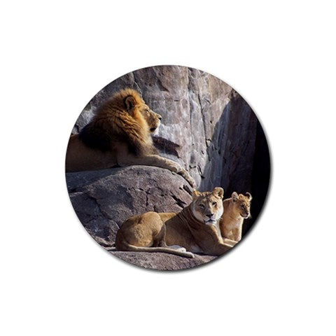 Lion By Jessica Huettl   Rubber Coaster (round)   Ot2si6en84oo   Www Artscow Com Front