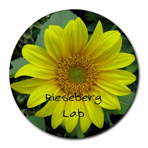 Rieseberg Lab By M  Cathay   Collage Round Mousepad   Vohedjq7pytu   Www Artscow Com 8 x8 Round Mousepad - 1