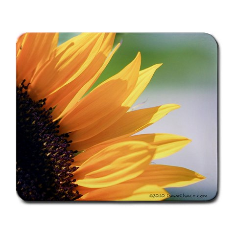 sunflower purrrrty by Dawn Chace Front