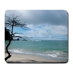 Manuel Antonio - Large Mousepad
