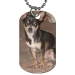 gizmo - Dog Tag (Two Sides)