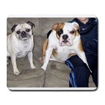 Emma & Lulu - Large Mousepad