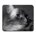 Kitty Mousepad - Large Mousepad