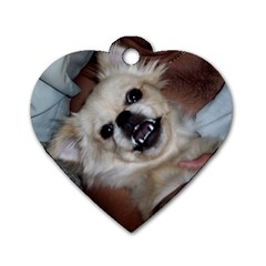 Belle By Megan Walker   Dog Tag Heart (two Sides)   B60g6zu2nabw   Www Artscow Com Front