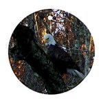 Bald Eagle ornament - Ornament (Round)