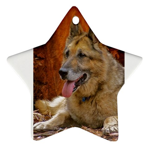 Zoe Is Our Star By Suzanne Westbrook   Ornament (star)   4rbyqlk2l854   Www Artscow Com Front
