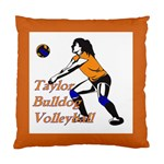 Taylor Volleyball Cushion - Standard Cushion Case (One Side)