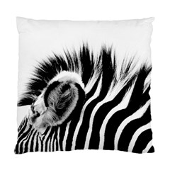 Zebra By Shahni Bidwell   Standard Cushion Case (two Sides)   5cozo8xwqzyr   Www Artscow Com Front