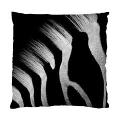 Zebra By Shahni Bidwell   Standard Cushion Case (two Sides)   5cozo8xwqzyr   Www Artscow Com Back