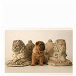 shar-pei4u@earthlink.net - Bucket Bag