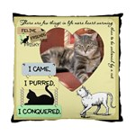 Feline Friends Pillow - Standard Cushion Case (One Side)