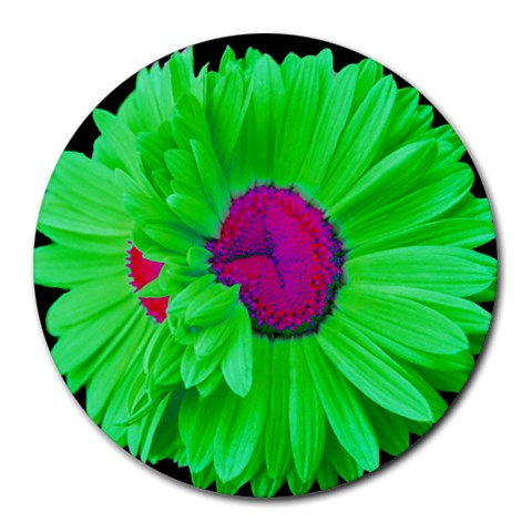 Limegreen Pink Painted Daisy Mouse Pad By Mary   Round Mousepad   Dzndhy7rdk21   Www Artscow Com Front