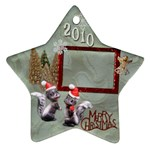 skunk Remember when 2010 ornament 12 - Ornament (Star)
