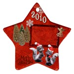 skunk Remember when 2010 ornament 14 - Ornament (Star)