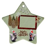 Skunk Remember when 2010 ornament 17 - Ornament (Star)