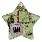 sleepy boy 2010 ornament 109 - Ornament (Star)