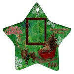 santa sleigh remember when 2010 ornament 165 - Ornament (Star)