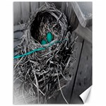 Robins nest PVleer - Canvas 18  x 24