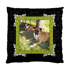 Green, Black, & White 2 Sided Cushion Case By Klh   Standard Cushion Case (two Sides)   3awyuv4kymnh   Www Artscow Com Front