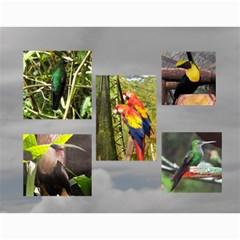 Costa Rica 2010 By Janice   Wall Calendar 11  X 8 5  (12 Months)   Btbkr8vuzahz   Www Artscow Com Month