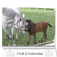 Bob s Calendar 2011 By Iain And Elaine Hunter   Wall Calendar 11  X 8 5  (12 Months)   P1gwxahdzqxt   Www Artscow Com Cover