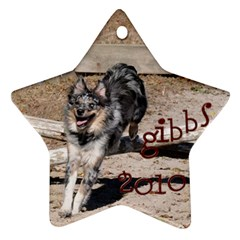 Gibbs Ornament By Katie   Star Ornament (two Sides)   Xyu9sx04knd8   Www Artscow Com Front