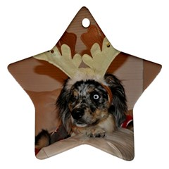 Gibbs Ornament By Katie   Star Ornament (two Sides)   Xyu9sx04knd8   Www Artscow Com Back