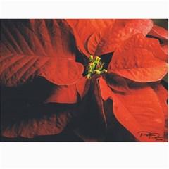 Calendar!!!!! By Melina   Wall Calendar 11  X 8 5  (12 Months)   Xnijh54sw0q5   Www Artscow Com Month
