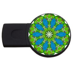 Green Earth USB Flash Drive Round (2 GB) by CharmingThingsandDesigns