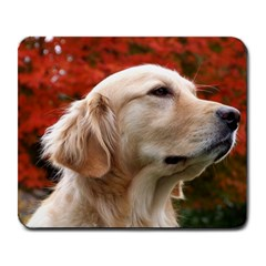 Dog Photo Cute Large Mousepad by adriantesting