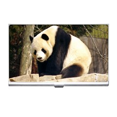 Giant Panda National Zoo Business Card Holder by rainbowberry