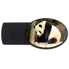 Giant Panda National Zoo USB Flash Drive Oval (1 GB) by rainbowberry