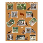 Lassie 60x72 Shower Curtain - Shower Curtain 60  x 72  (Medium)