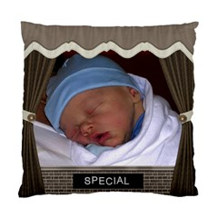 Special & Wonderful 2 Sided Cushion Case By Lil    Standard Cushion Case (two Sides)   S249sap32ct4   Www Artscow Com Front