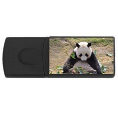 Big Panda Usb Flash Drive Rectangular (4 Gb)