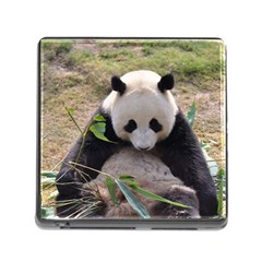 Big Panda Memory Card Reader With Storage (square) by dropshipcnnet
