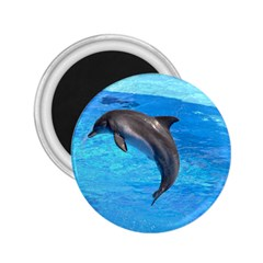 Jumping Dolphin 2 25  Magnet by dropshipcnnet