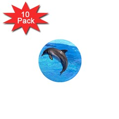 Jumping Dolphin 1  Mini Magnet (10 Pack)  by dropshipcnnet