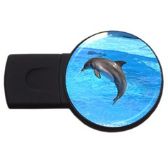 Jumping Dolphin Usb Flash Drive Round (2 Gb) by dropshipcnnet