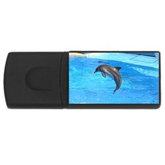 Jumping Dolphin Usb Flash Drive Rectangular (4 Gb)