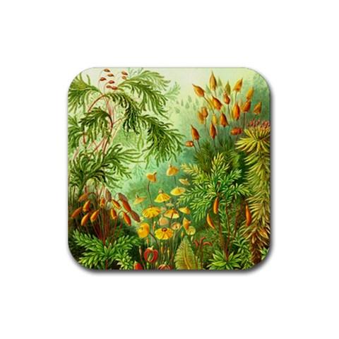 Paleozooic Plants By Dorian D?rge   Rubber Coaster (square)   Iwg8j2mcz4vn   Www Artscow Com Front