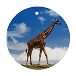 giraffe2 - Ornament (Round)