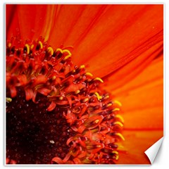 Flower By Donny   Canvas 12  X 12    Q8lcp88jrown   Www Artscow Com 12 x12 Canvas - 2