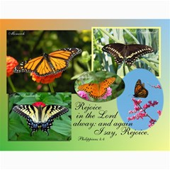Gift Calendar 2011 By Mary Stephens   Wall Calendar 11  X 8 5  (12 Months)   79s2ryd0k5ge   Www Artscow Com Month