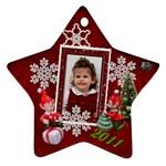 wynter ornament - Ornament (Star)