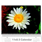 Calender - Wall Calendar 11  x 8.5  (12-Months)